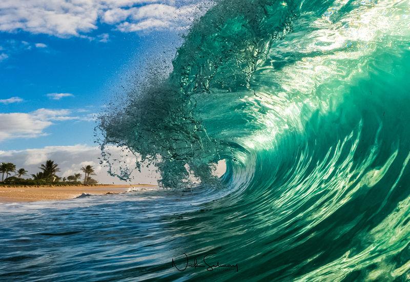Sandy's Beach in Oahu Photos for Sale