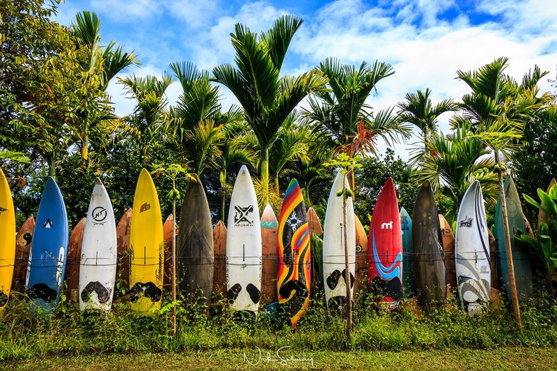 The Maui Surfboard Fence is a famous landmark in Maui, HI. Purchase this beautiful surfboard photography print & see the other surfboard photography for sale.