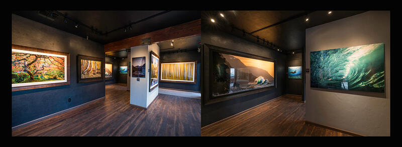 Come join along on our 2021 Photography Workshops!!