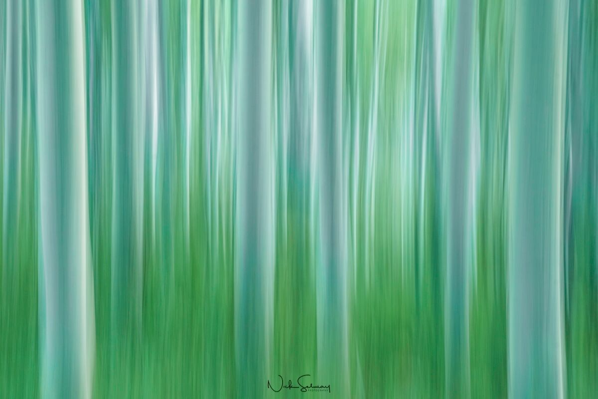 Abstract Photography in Nature for Sale