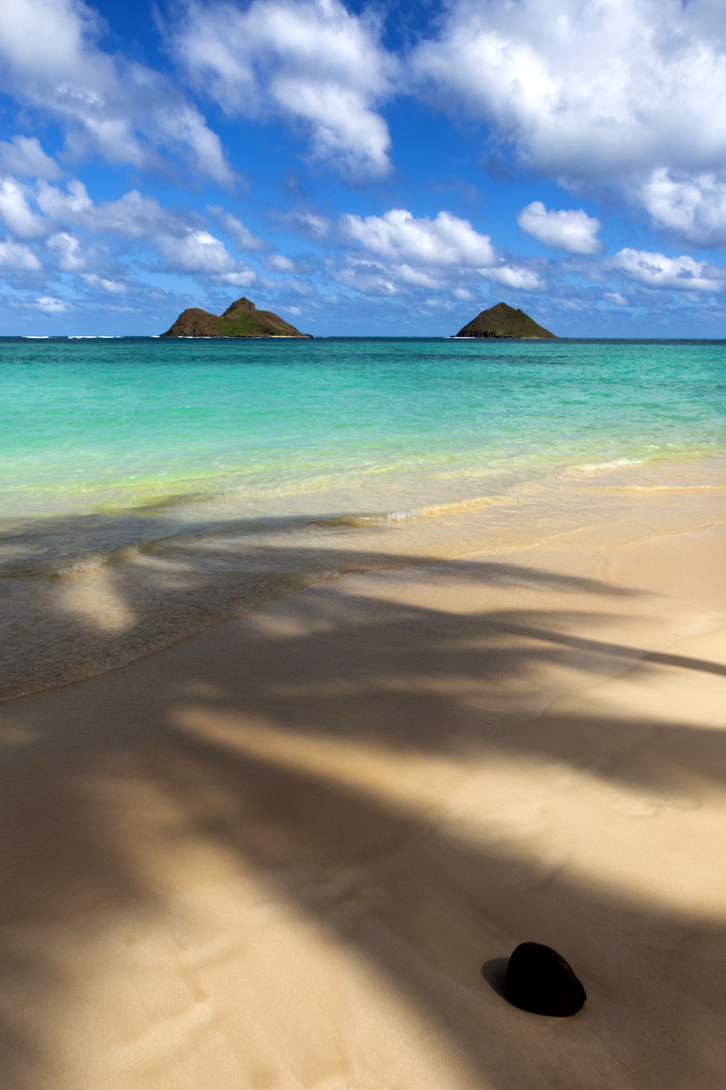 """Palm Tree shadows dance across the famous beach know as """"Kailua"""" with the """"Mokulua Islands"""" in the distance"""