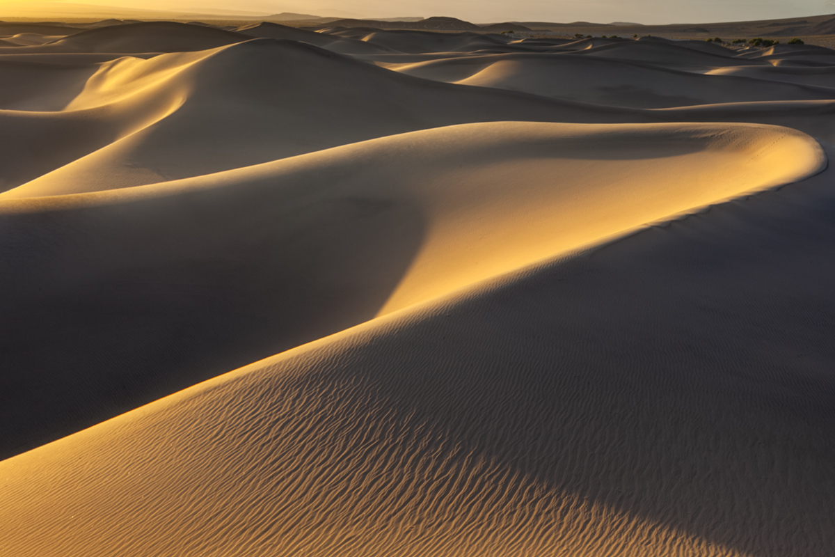 Sand dunes twist and turn as the sunset light brings them to life.