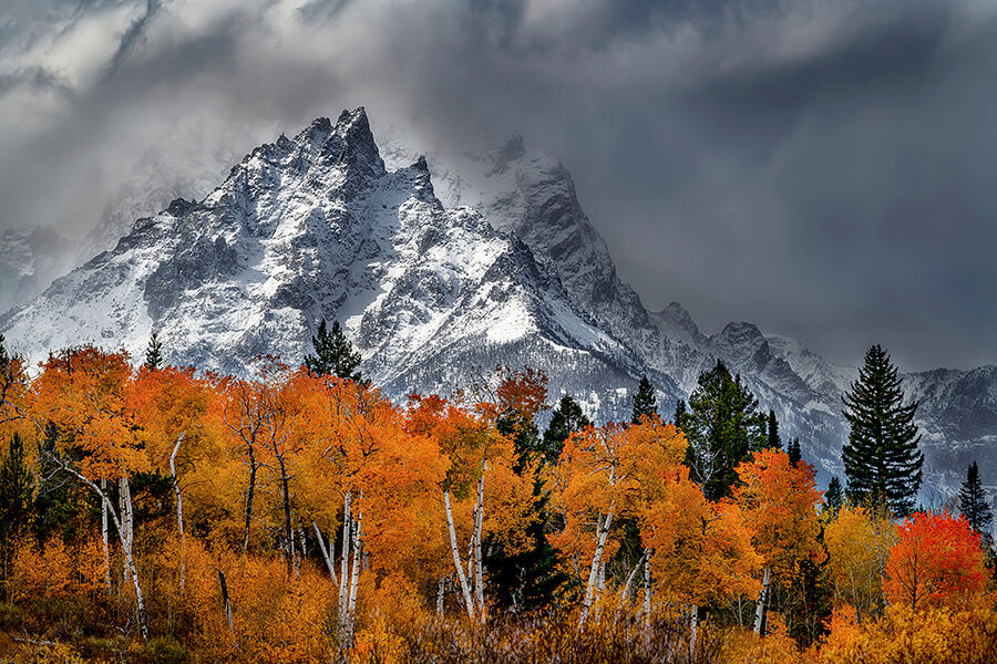 A winter storm takes its grip on the Teton Range with the vibrant peak Fall Colors holding on.  Grand Teton is the highest mountain...