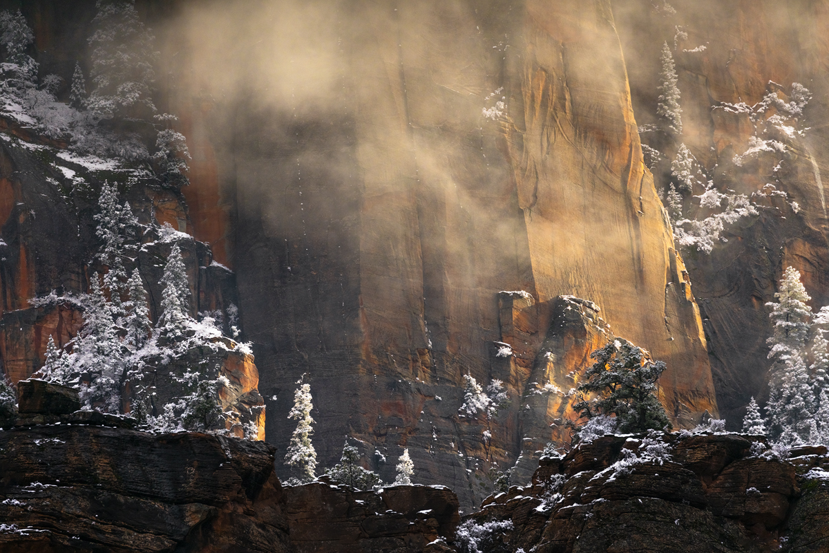 A rare snow storm dumped around 5 inches of snow in Zion National Park in Dec 2020.  Luckily I was in the are and was able to...
